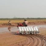 Thực trạng và giải pháp phát triển cơ giới hóa  trong sản xuất nông nghiệp, thủy sản tại Hải Phòng