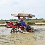 Công ty TNHH máy nông nghiệp và khuyến nông Hà Nội (HAMCO)