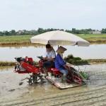 Trung tâm khuyến nông khuyến ngư Bắc Giang chuyển giao máy cấy lúa HAMCO