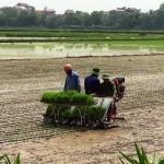 Miễn Thuế GTGT đối với máy nông nghiệp và phân bón từ ngày 01/01/2015