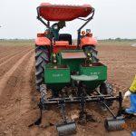 Áp dụng máy trồng Khoai tây trong sản xuất vụ Đông tại Tỉnh Thái Bình