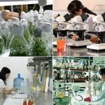Quy định về thu hút cá nhân hoạt động khoa học và công nghệ