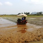 """Bộ nông nghiệp phê duyệt """"Đề án đẩy mạnh cơ giới hóa nông nghiệp tạo động lực tái cơ cấu ngành nông nghiệp"""""""