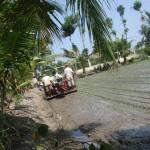 Trà Vinh: huyện Càng Long đưa máy cấy lúa vào sản xuất
