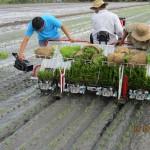 Kế hoạch phát triển ngành công nghiệp máy nông nghiệp