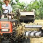 Anh Nguyễn Ngọc Thuận: Sáng chế thành công máy cuốn Rơm tự hành